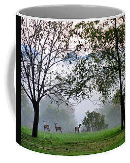Morning Trio Coffee Mug