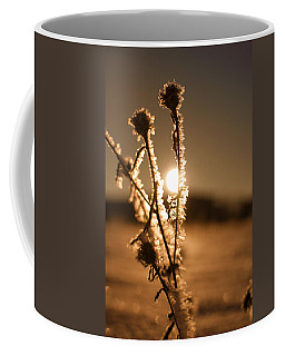 Coffee Mug featuring the photograph Morning Walk by Miguel Winterpacht