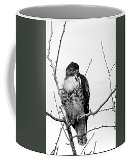 Coffee Mug featuring the photograph Morning Watch by I'ina Van Lawick