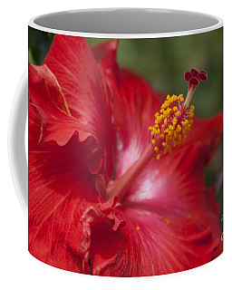 Morning Whispers Coffee Mug