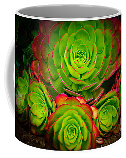 Morro Bay Echeveria Coffee Mug