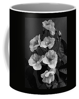 Moschata Alba Coffee Mug