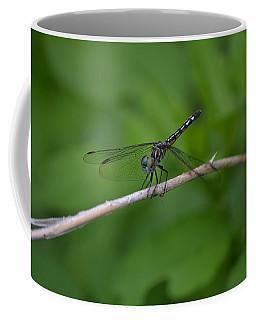 A Mosquito Hawk - Dragonfly Coffee Mug