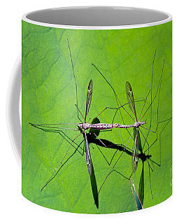 Coffee Mug featuring the photograph Mosquitoes Mating by George Atsametakis