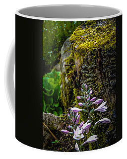 Moss And Flowers In Markree Castle Gardens Coffee Mug