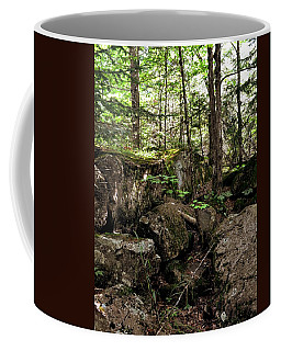 Mossy Rocks In The Forest Coffee Mug