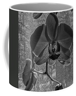 Coffee Mug featuring the photograph Moth Orchid In Window by Ron White