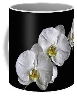Moth Orchid Trio Coffee Mug