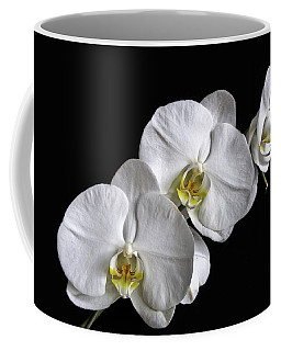 Moth Orchid Trio Coffee Mug by Ron White