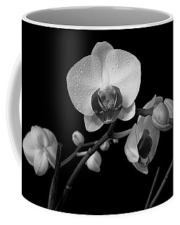 Moth Orchids Coffee Mug by Ron White