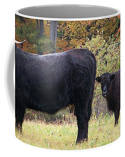 Coffee Mug featuring the photograph Highland Cattle  by Eunice Miller