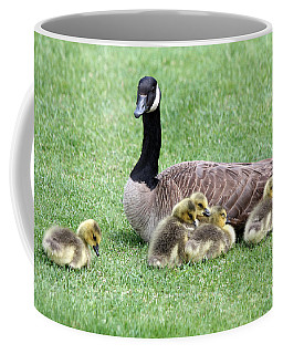 Mother And Young Coffee Mug
