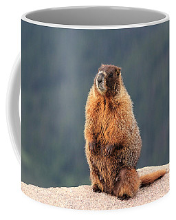 Mother Marmot Coffee Mug