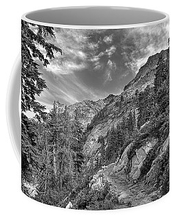 Mount Pilchuck Black And White Coffee Mug