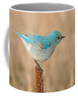 Mountain Bluebird Coffee Mug