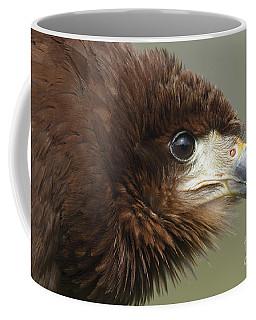 Mountain Caracara  Coffee Mug