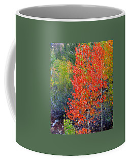 Mountain Color Coffee Mug by Marilyn Diaz