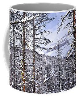 Mountain Landscape Coffee Mug