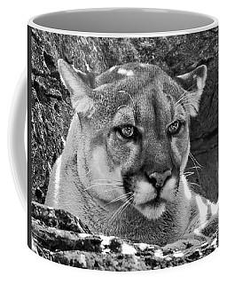 Mountain Lion Bergen County Zoo Coffee Mug