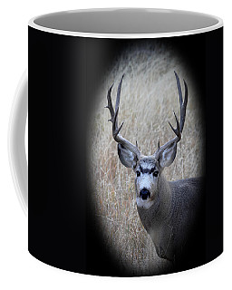 Mountain Mule Deer Coffee Mug