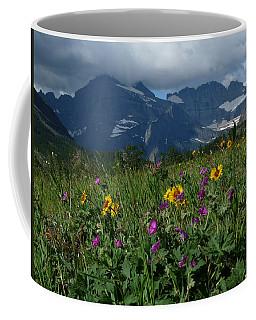 Mountain Wildflowers Coffee Mug by Alan Socolik