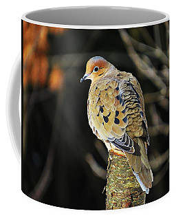 Mourning Dove On Post Coffee Mug by MTBobbins Photography