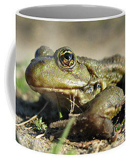 Coffee Mug featuring the photograph Mr. Charming Eyes. Side View by Ausra Huntington nee Paulauskaite