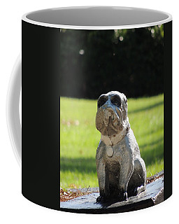 Coffee Mug featuring the photograph Mr Cool by Aaron Martens