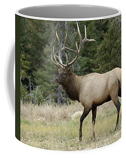Mr Majestic Coffee Mug by Bob Christopher
