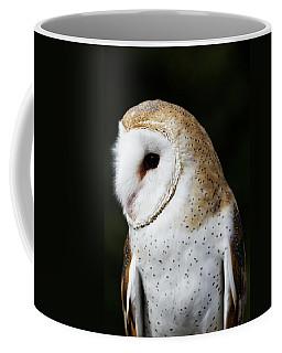 Mr Owl  Coffee Mug