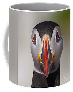 Mr. Puffin.. Coffee Mug