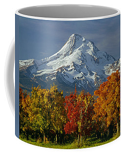 1m5117-mt. Hood In Autumn Coffee Mug