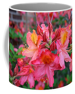 Mt St Helens Azalea Coffee Mug by Kathryn Meyer