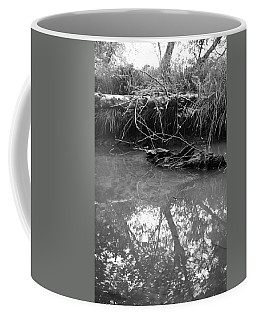 Coffee Mug featuring the photograph Muddy Creek by Adria Trail