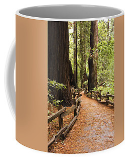 Coffee Mug featuring the photograph Muir Woods Trail by Susan Leonard