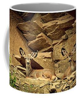 Mule Deer Camouflage Coffee Mug