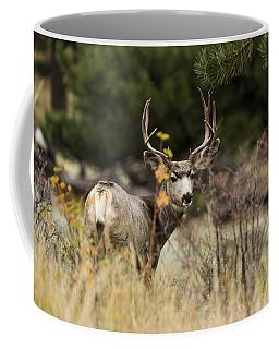 Mule Deer I Coffee Mug