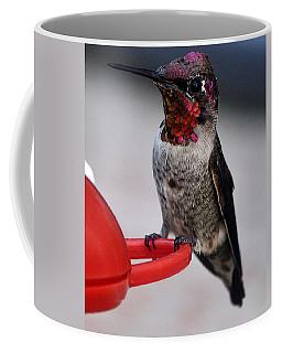 Coffee Mug featuring the photograph Multi Colored Hummingbird Male Anna by Jay Milo