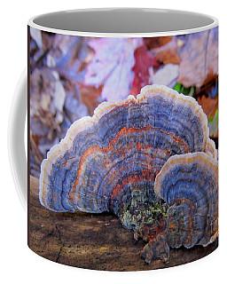 Multicolor Mushroom Coffee Mug