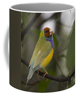 Multicolored Beauty Coffee Mug