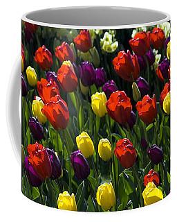 Colorful Tulip Field Coffee Mug