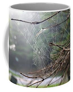 Multiple Webs - Near Coffee Mug