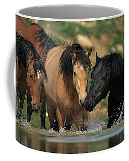 Mustangs At Waterhole In Summer Coffee Mug