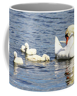 Coffee Mug featuring the photograph Mute Swans by Alyce Taylor