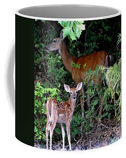 Coffee Mug featuring the photograph My Baby by Deena Stoddard