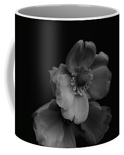 Coffee Mug featuring the photograph My Fair Lady by Rachel Mirror