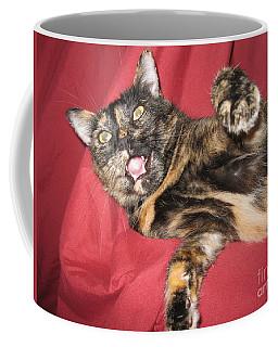 My Funny Cat Coffee Mug
