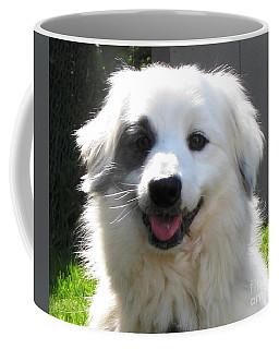 Coffee Mug featuring the photograph My Little Pirate by Judy Palkimas