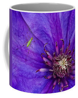 My Old Clematis Home Coffee Mug