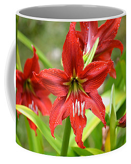 My Red Daylily...after The Rain Coffee Mug
